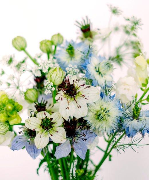 Jora-Dahl-Nigella-Wild-Bouquets