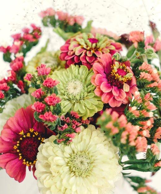 Jora-Dahl-Zinnien-Wild-Bouquets